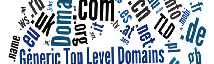 How can the new gTLDs and consequent Search Engine Optimization affect you?