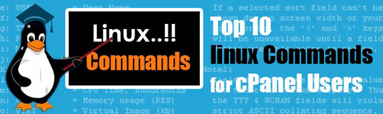 List of Top 10 Linux Basic Commands With Examples