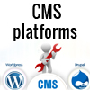 Why CMS platforms are common hacking targets and what steps you should take to secure your website from hacking?