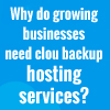 Why do growing businesses need cloud backup hosting services?