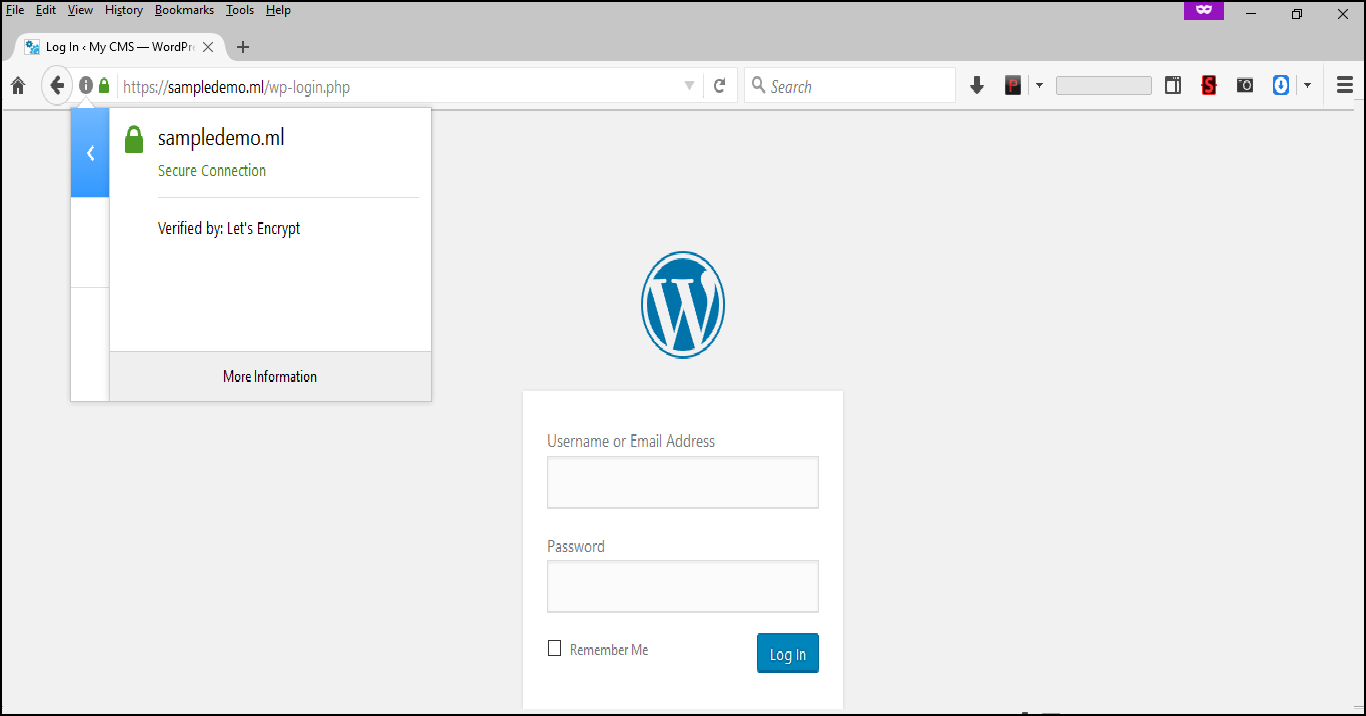 How to install a free SSL certificate on your WordPress website with cPanel or Plesk? 17
