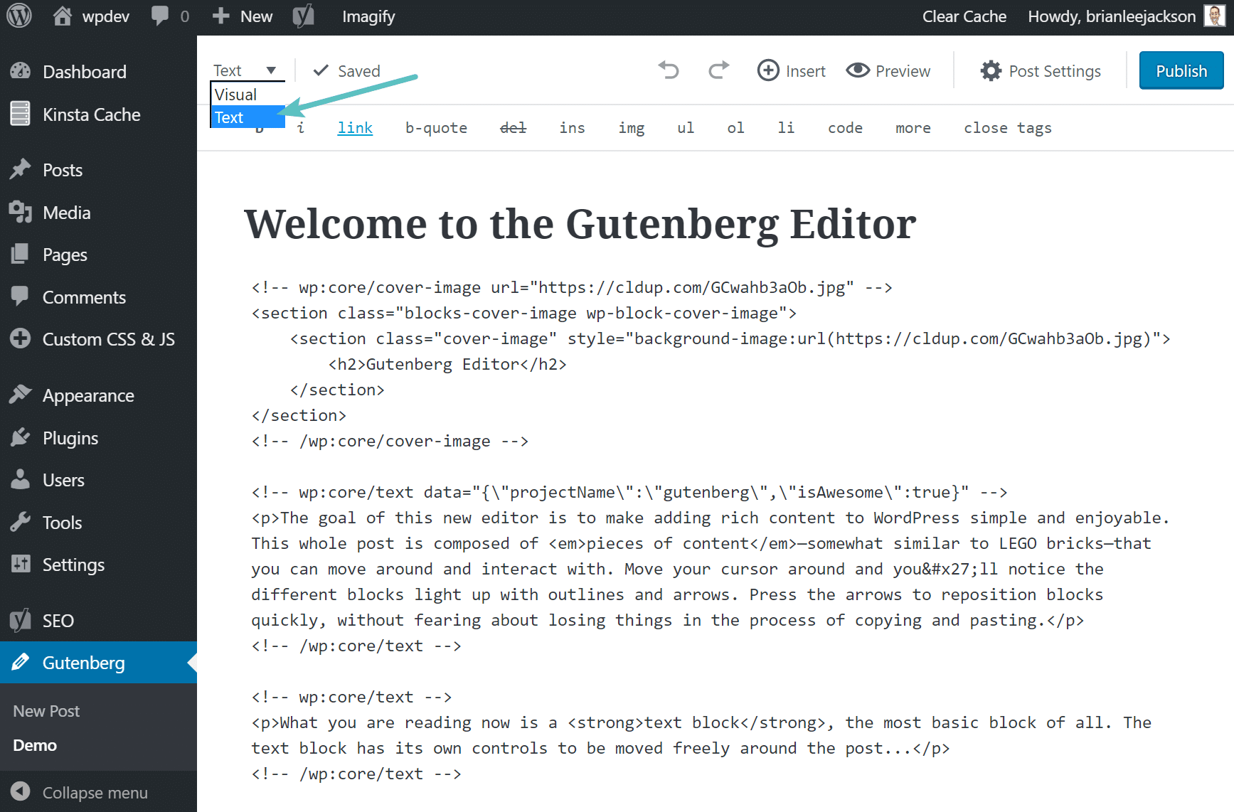 Everything you need to know about Gutenberg— the new WordPress editor 4