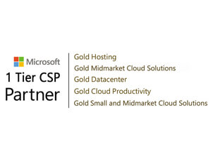 Microsoft Partner icon