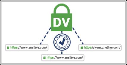 wildcard Dv SSL